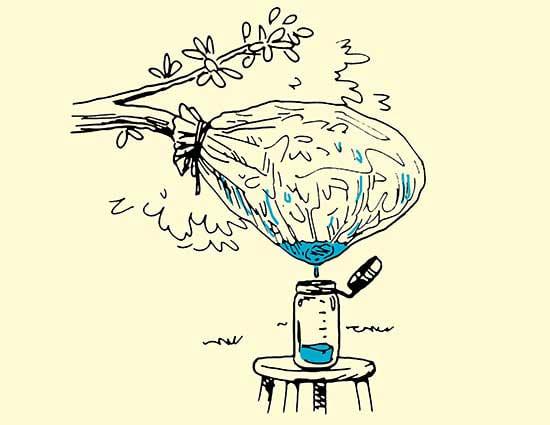 metodi-per-potabilizzare-acqua